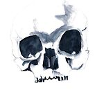 Watercolour skull by withoutwax94