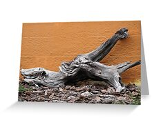 Driftwood by a Wall Greeting Card