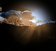 Tranquility by Irfan Gillani