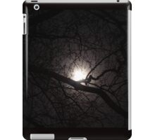 Winter Moon iPad Case/Skin