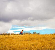 Old Woman Walking On Hill by Roldan53