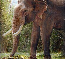 Park Elephant by gregoryalex