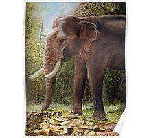 Park Elephant Poster