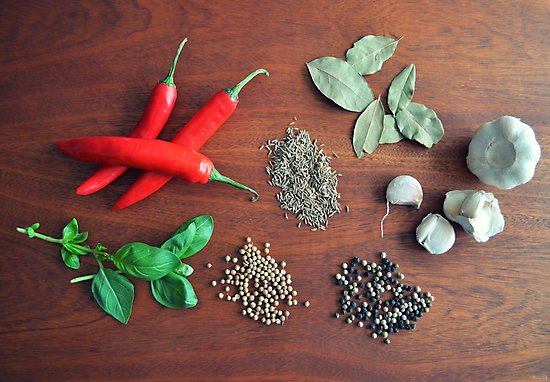 Herbs and Spices by Lissie E J