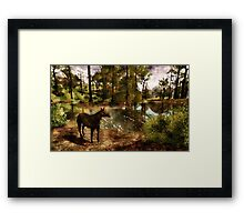 A River of Tranquility Framed Print