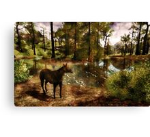 A River of Tranquility Canvas Print