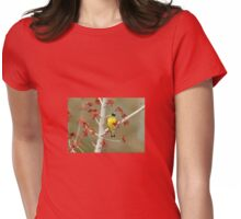 Lesser Goldfinch In Early Spring Womens Fitted T-Shirt