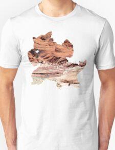 Mega Kangaskhan used Dizzy Punch T-Shirt