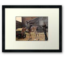 Janey & Baby Framed Print