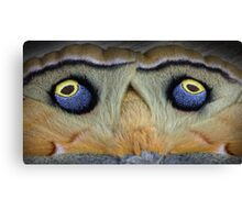Fake eyes Canvas Print