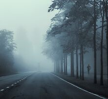 Never Look Back by Mikko Lagerstedt