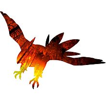 Talonflame used Flare Blitz by Gage White