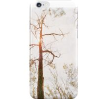 Winter in the Woodlands iPhone Case/Skin