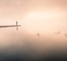 Solitude by Mikko Lagerstedt