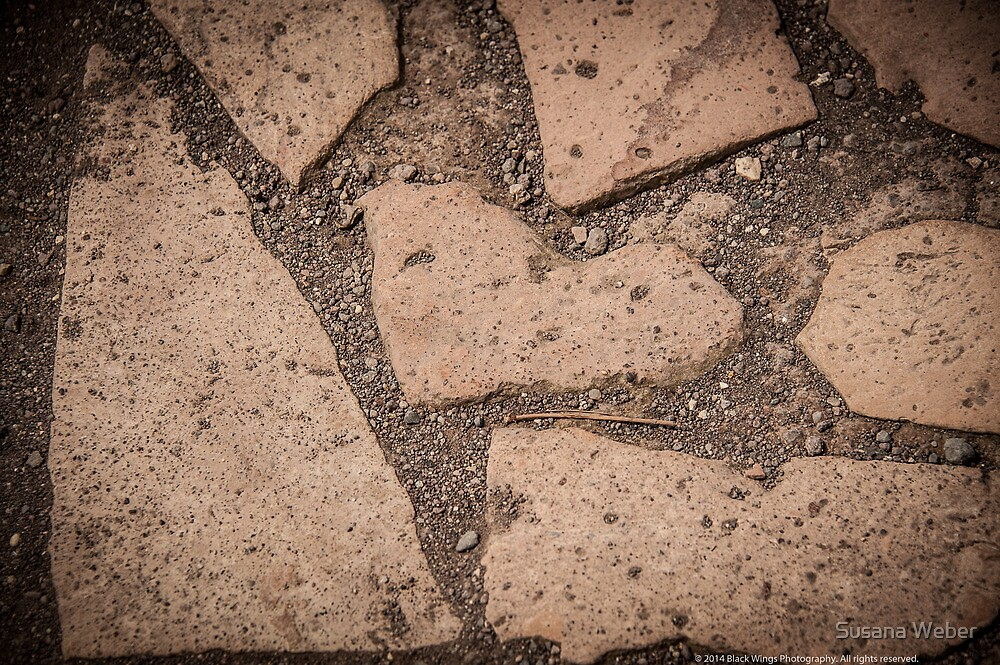 Stepping stone heart by Susana Weber