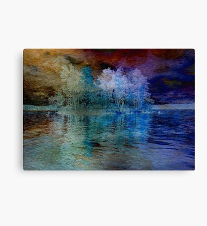 Island in the Storm Canvas Print