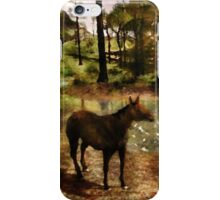 A River of Tranquility iPhone Case/Skin