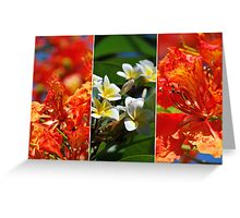 Summer Flowers Collage Greeting Card