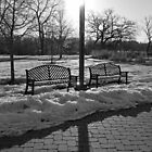 Cold Morning Sunrise by Gary Horner