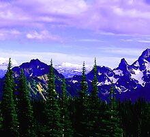 Jagged Peaks by Tori Snow