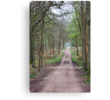 Places in movies Black Park England  Canvas Print