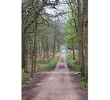 Places in movies Black Park England  Photographic Print