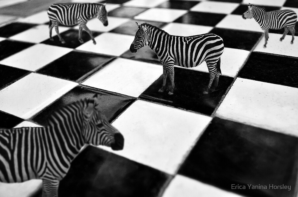 The Chessboard by Erica Yanina Horsley