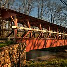The Colvin Covered Bridge by Lois  Bryan