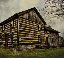 Historic Log Cabin by vigor
