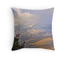 IREAND Throw Pillow