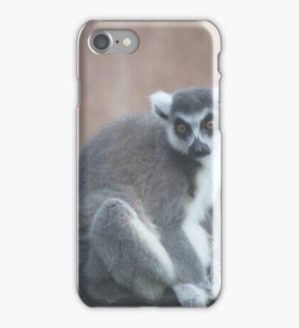 Ringtail lemur iPhone Case/Skin