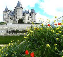 Chateau de Saumur by hans p olsen