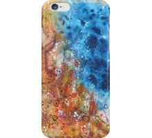 Flooded Plains - Tracks to the Waterhole iPhone Case/Skin