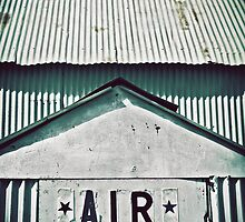Air by Trish Mistric