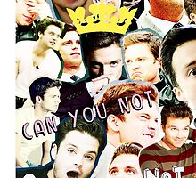 sebastian stan collage by landry89