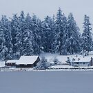 Snowy Lakeside Farm by Tori Snow