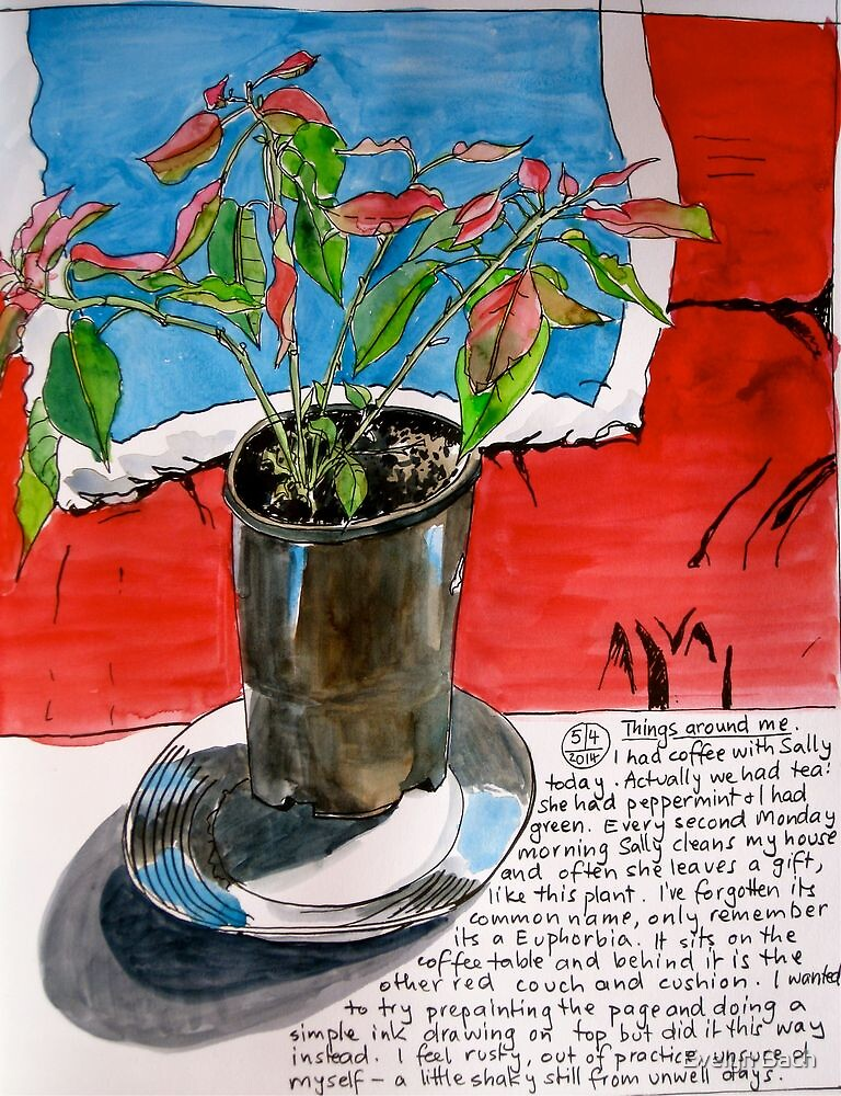 Sally's Plant by Evelyn Bach