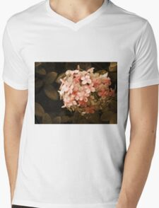 Secrets in Sepia Mens V-Neck T-Shirt