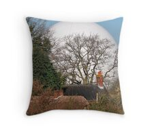 Don't you hate it when balls are thrown in your garden Throw Pillow