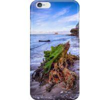 Stumpy On The beach 2 iPhone Case/Skin