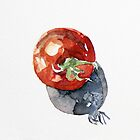 Tomato by BonniePortraits