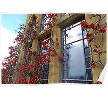 Mediaeval Fruit - Knightshayes Court, Devon Poster