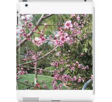 Peach Blossom iPad Case/Skin
