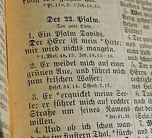 PSALMS 23 v. 1-3 - GERMAN by Sandra  Aguirre