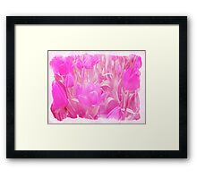 Hot Stuff - In Your Face PINK TULIPS Framed Print