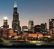 Chicago Skyline by ronaldgreep