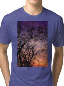tree and the sunset Tri-blend T-Shirt