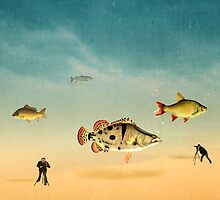 fish life  by motiashkar