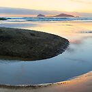 Whiskey Bay Beach, Wilsons Promontory, Victoria, Australia by Michael Boniwell