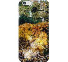 Woodland iPhone Case/Skin
